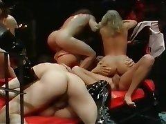 Anal German Group Sex Hardcore