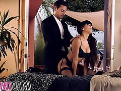 Babe Brunette Hardcore Pornstar