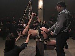 Anal BDSM Brunette Rough