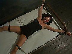 BDSM Bondage Brunette Fucking